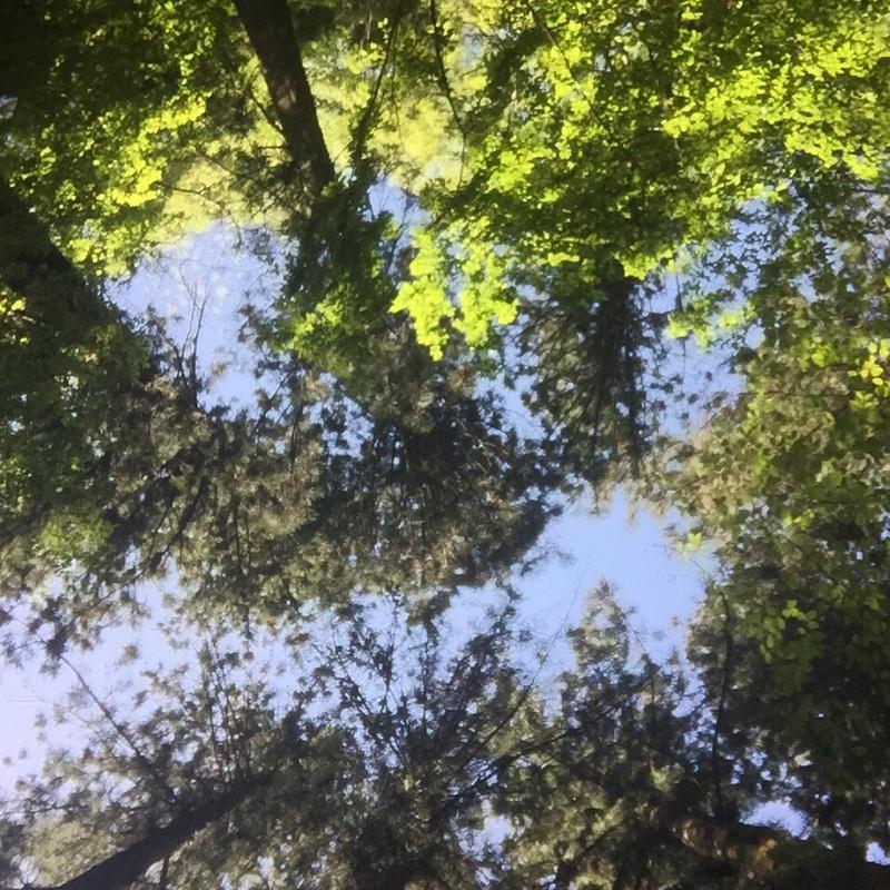 綺麗な空気を吸って、深呼吸しよう