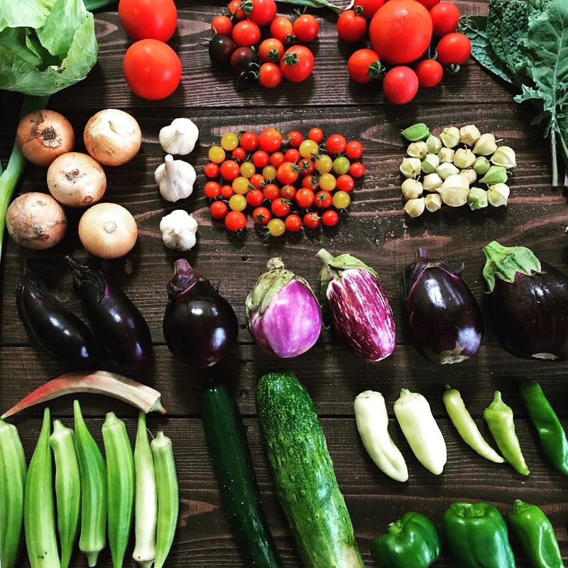 Idea3:卵+野菜
