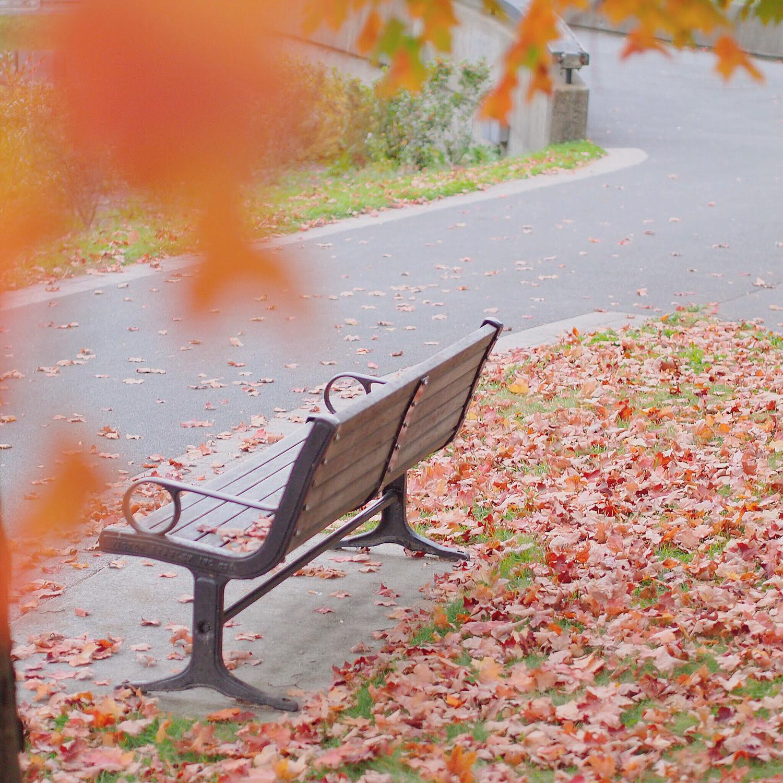 〜秋〜 こっくりくすみカラーの赤リップ