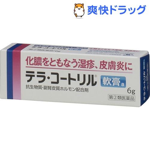 【第2類医薬品】テラ・コートリル軟膏a