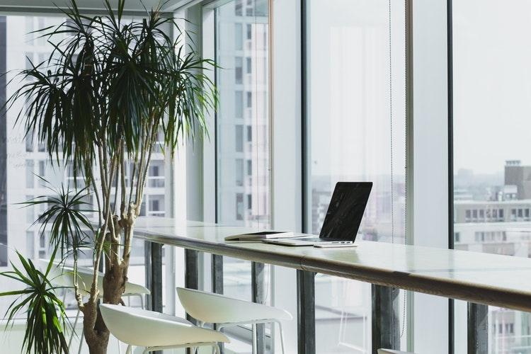 夏でも冬でもオフィスが乾燥しすぎ…。