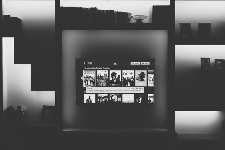 お家日の味方〝Netflix〟