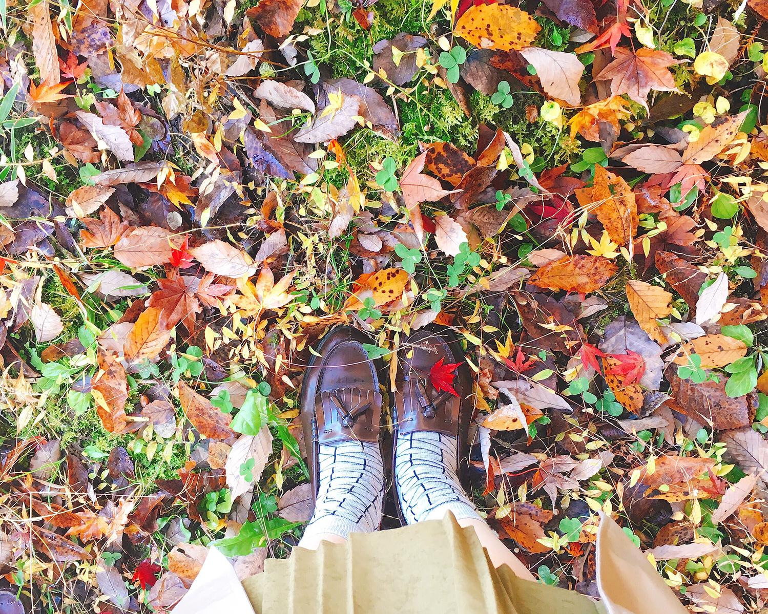 秋:ホクホクしたくなるほっこりな季節