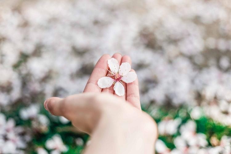 春は「別れ」の季節?今のカレと好きな人、新しい恋愛を始める前に考えたいこと