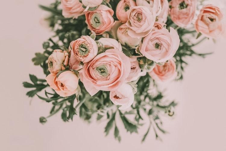 お花のある生活♡