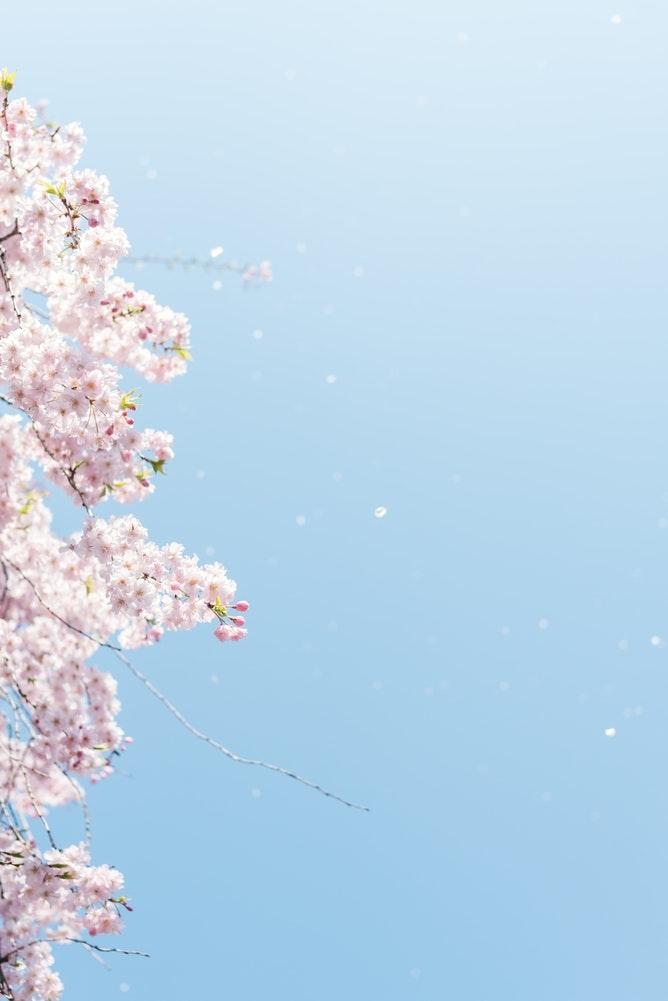 ウキウキ、#春から女子大生