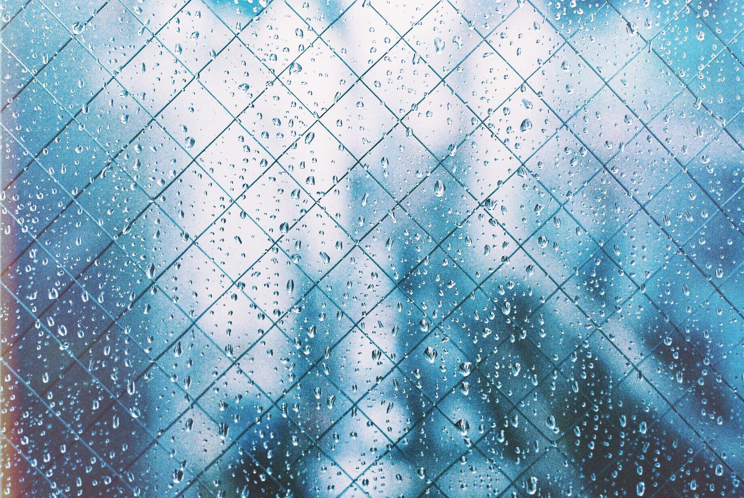 「雨が止みませんね」