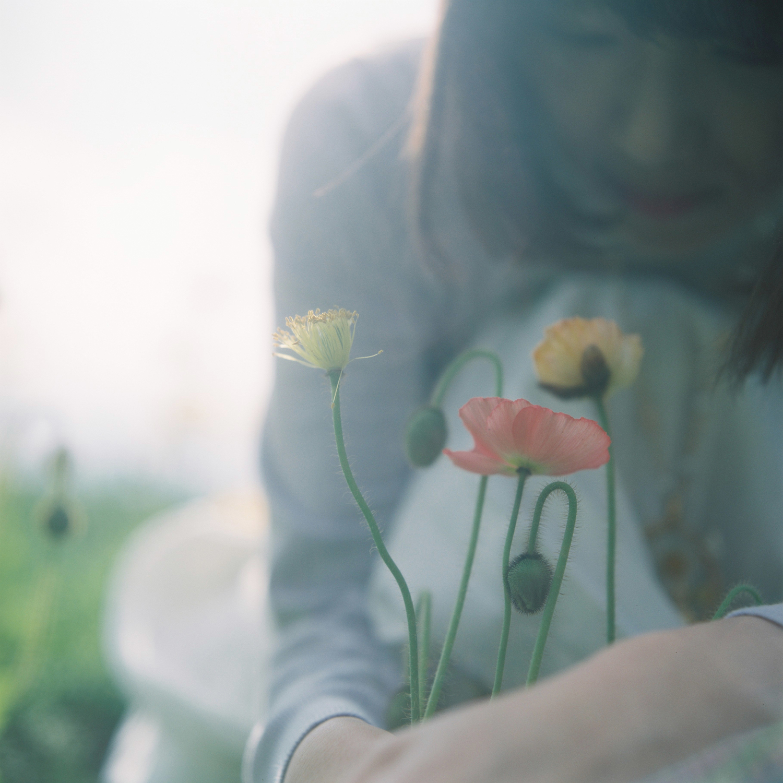 毎年あの花が咲く、思い出す