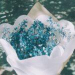別れる彼に教える花の名前。川端康成『掌の小説』から学ぶ、さよならの美学