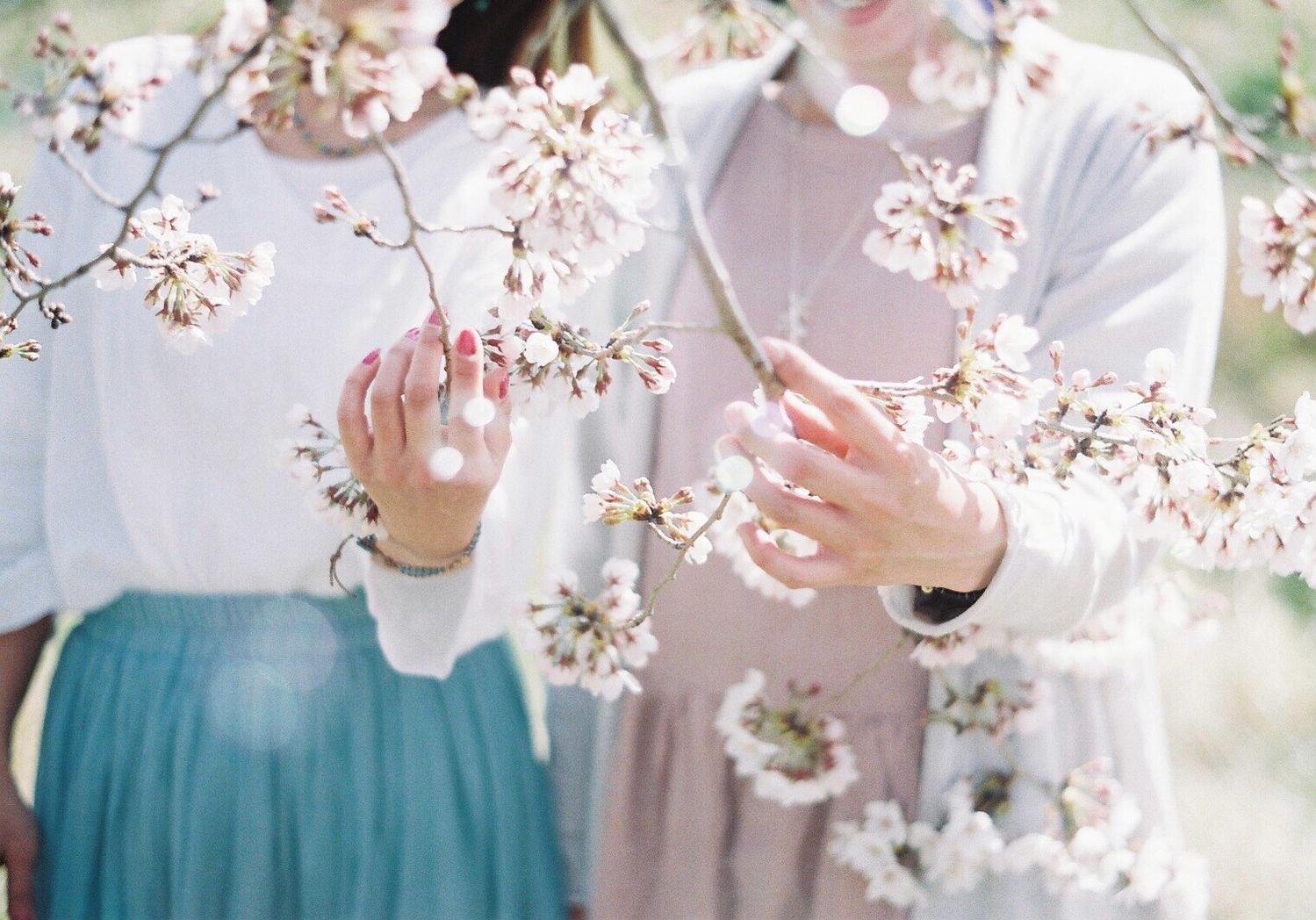 :春タイプさん
