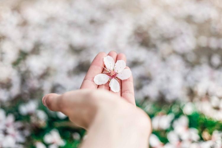 春は「別れ」の季節だけど