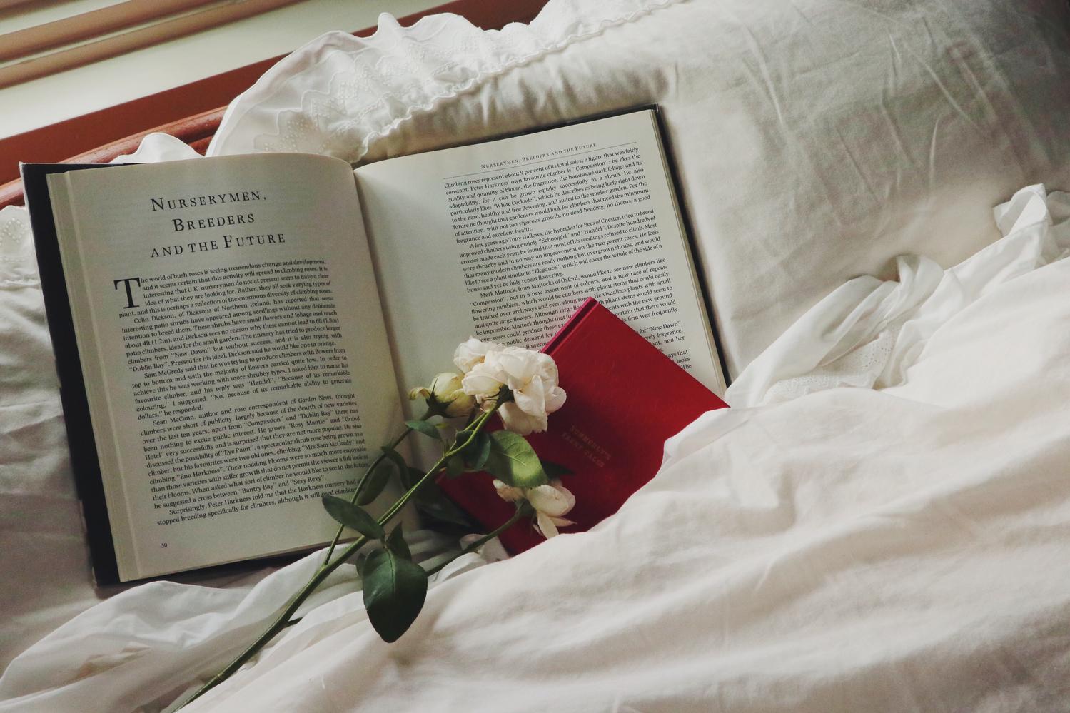  本を読んでみる 