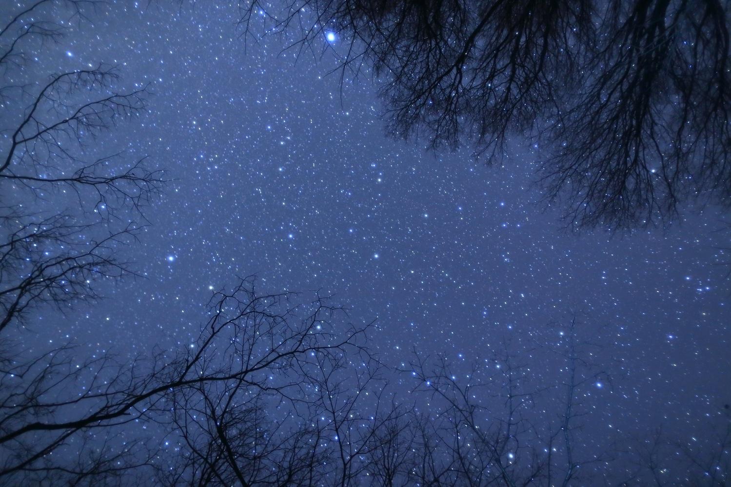 _星を見に行こう
