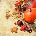 私たち、9月が旬なんデス♡今こそ食べたい秋の食材7つを使ったレシピまとめ
