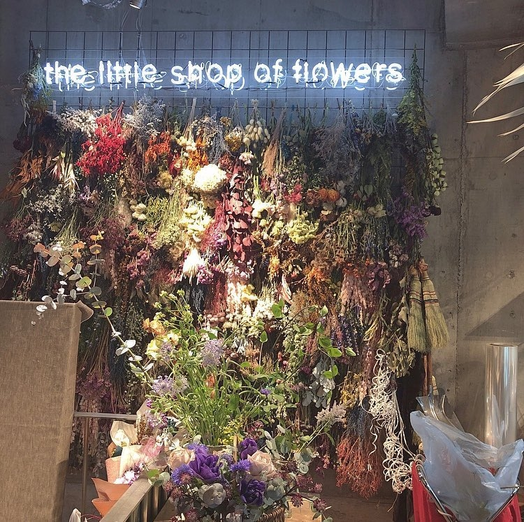 6_The Little Shop of Flowers