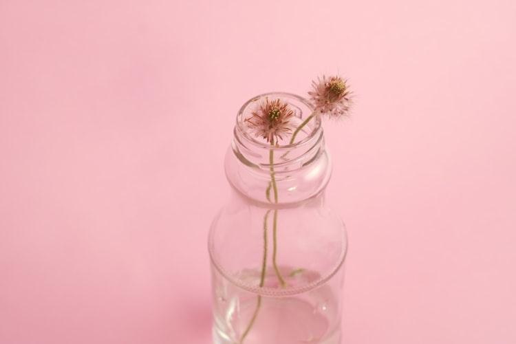 淡いピンク系|お花色を身に纏わない?