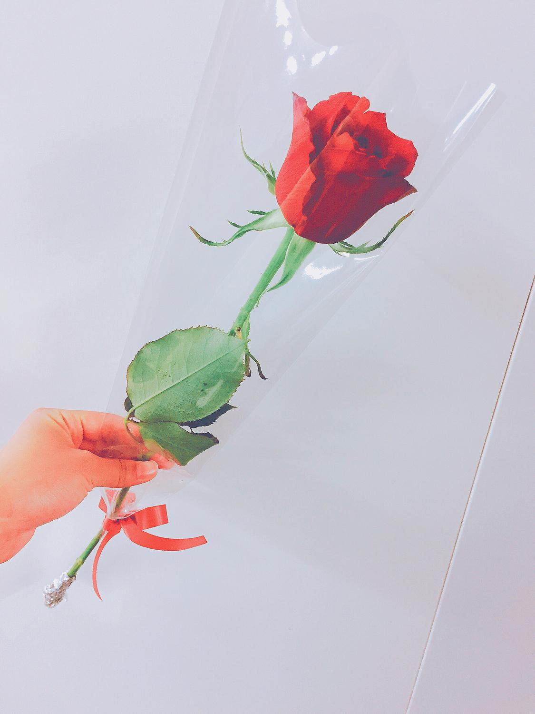手元には一輪の薔薇を