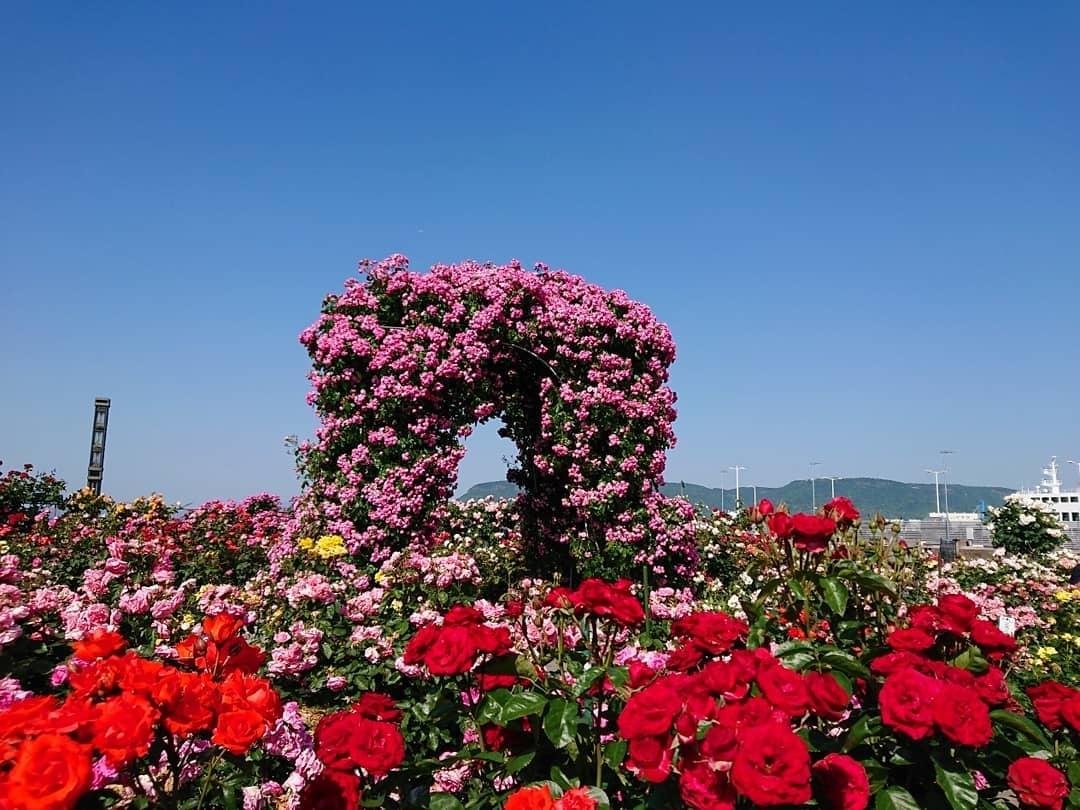 高松港の映えスポット