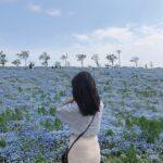 簡単!お花畑で映えた写真を撮る3つのコツ。カメラ苦手さんでも素敵なフォトに