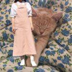 またの名を第二のシモキタ。名古屋・大須にあるどえりゃあ可愛い7つの古着屋さん