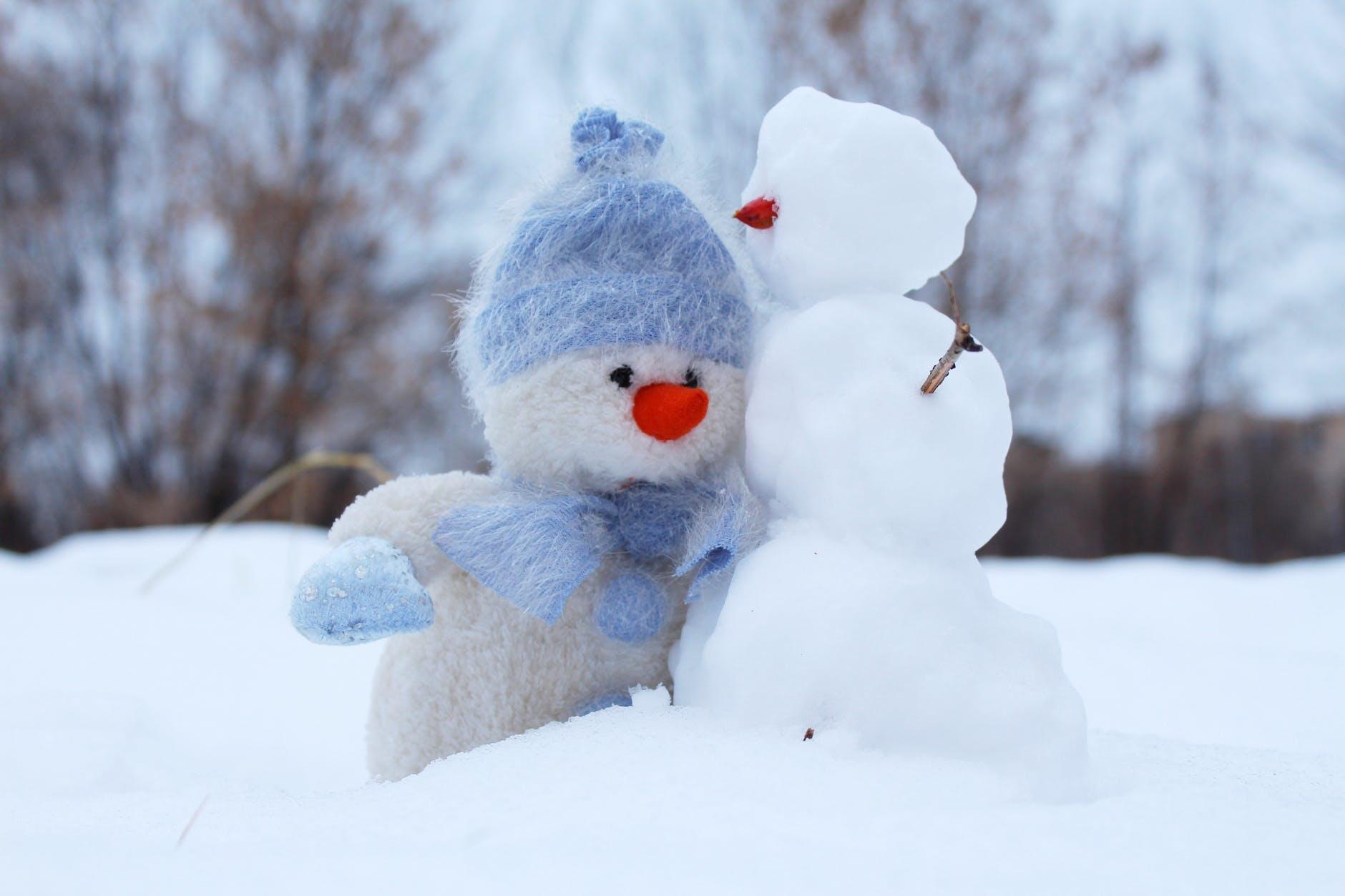 寒い季節がやってきた〜