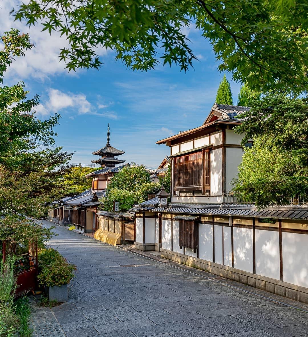 京都の竹林は嵐山だけじゃない!