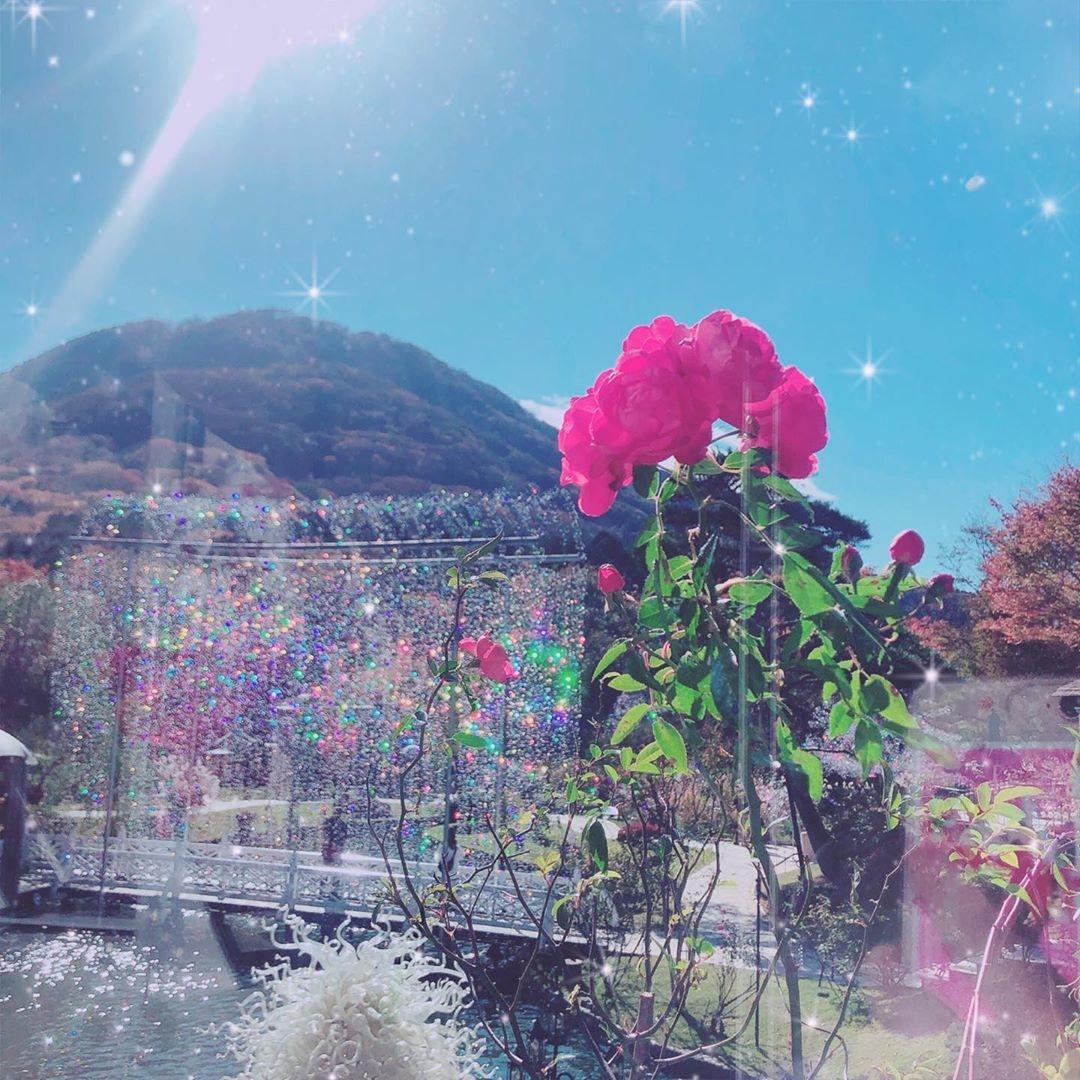 冬デートが楽しめるのは「箱根」という噂
