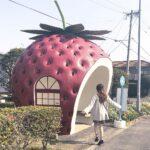 フルーツバス停でフォトジェニ旅。カメラ女子必見の長崎女子旅で最高の思い出つくりを