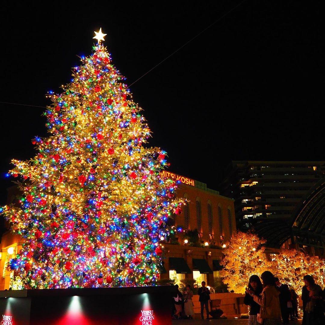 【恵比寿】クリスマスは王道デートをしましょ。お洒落なスポットをご紹介します