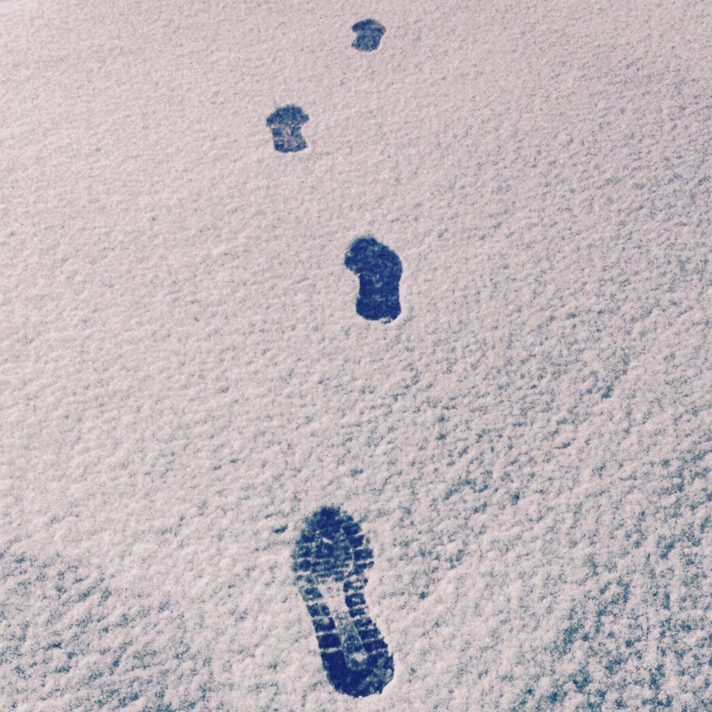 しんしんと積もる雪を連想させる白