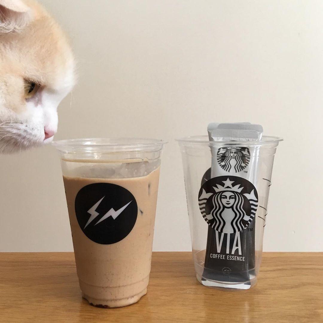 (♡)Starbucks Coffee Japan