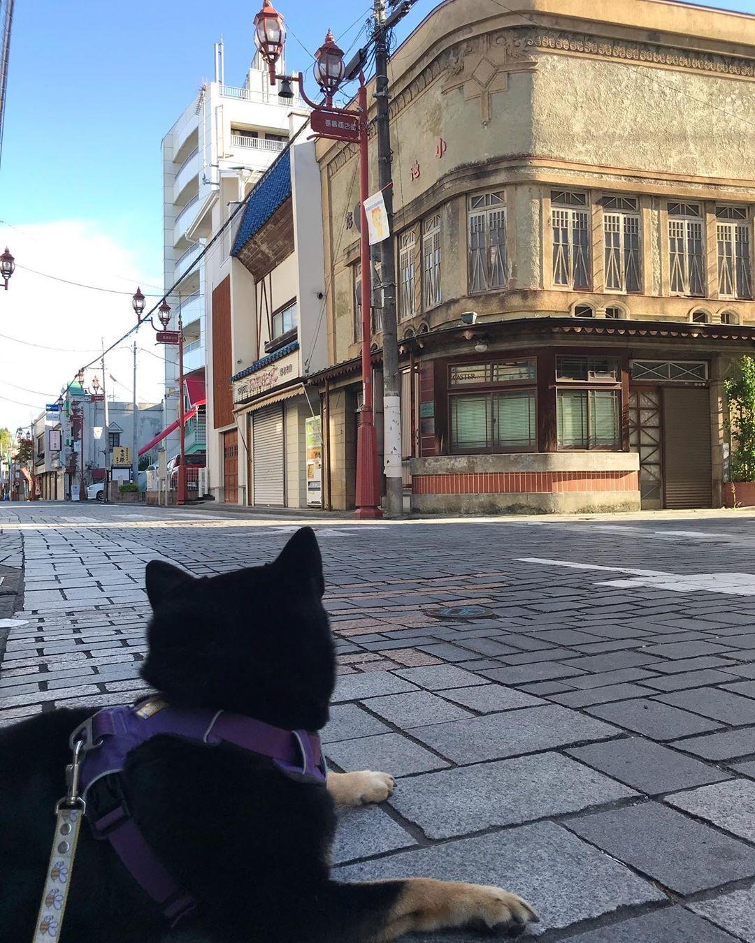 レトロな町並みをお散歩@番場通り
