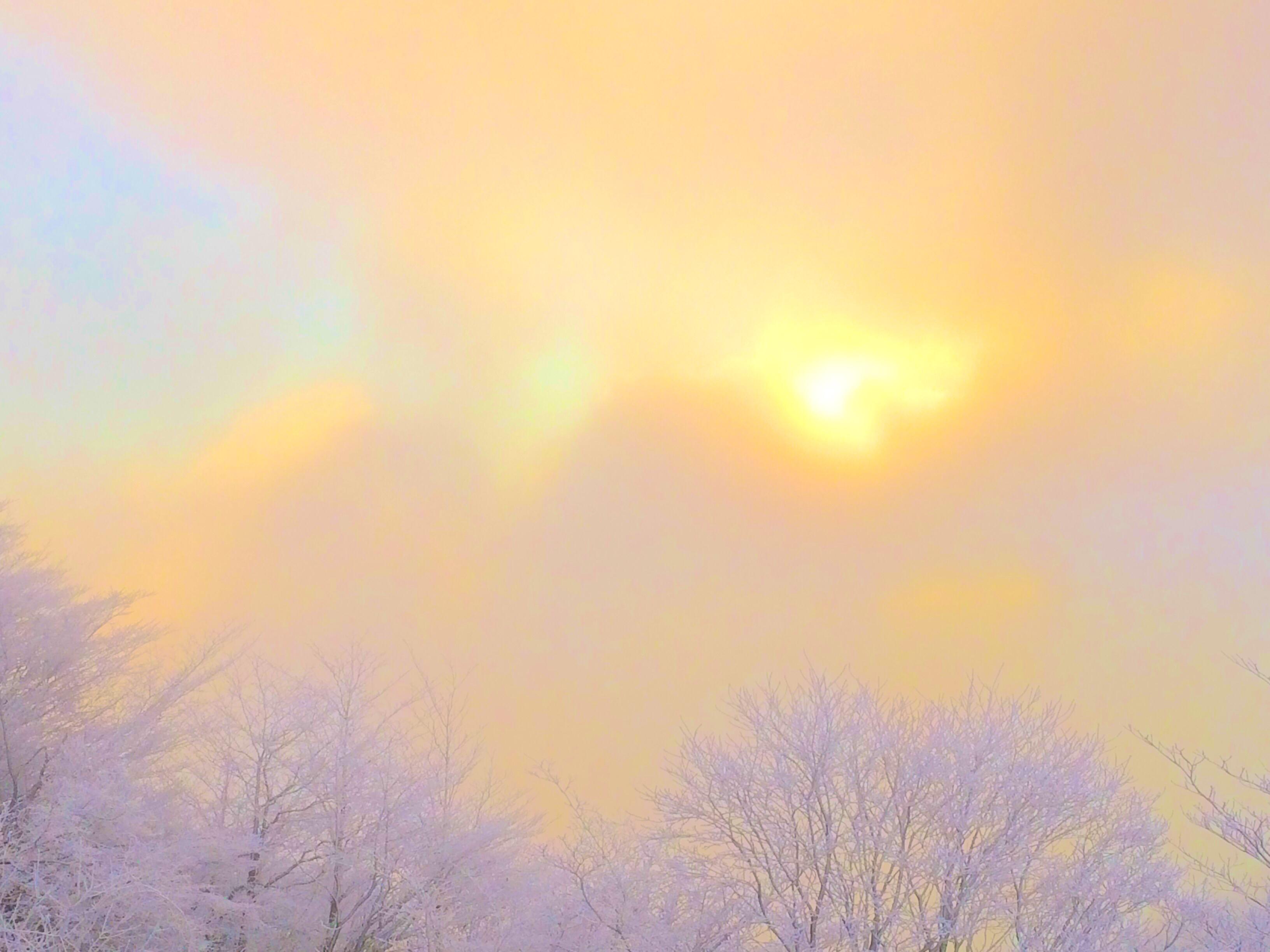 冬の朝活はとても難しいでしょ?