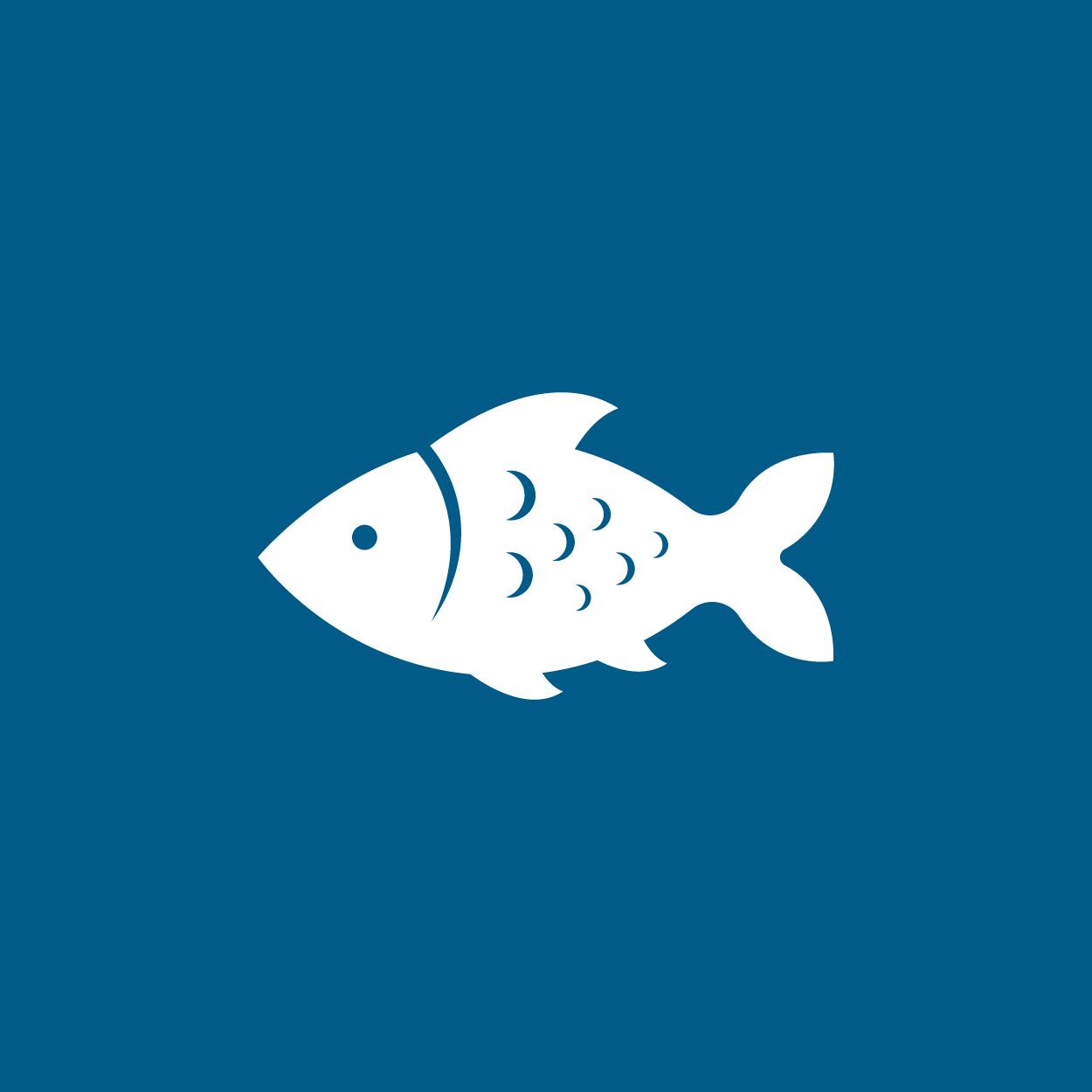焼き魚を出す時の向き:頭が左・お腹が手前