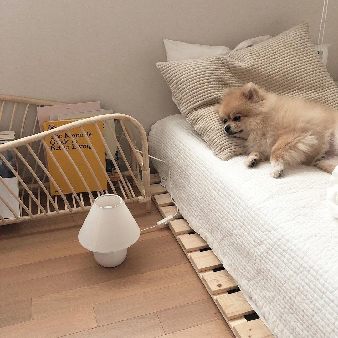 「高さの無いベッド」が韓国で流行中だそう♡シンプルなベッドルームに近づく秘訣