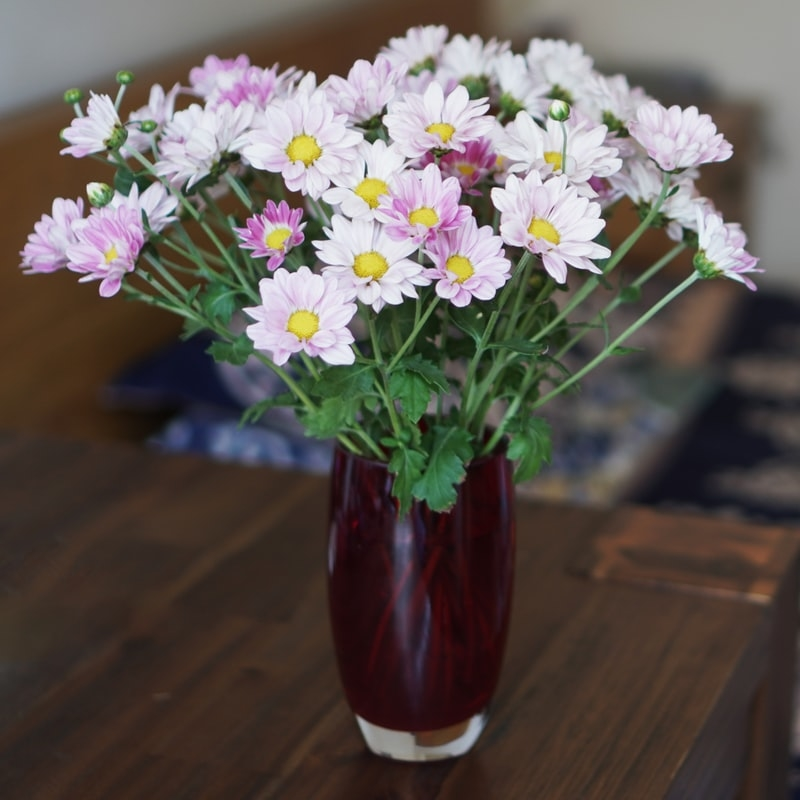 花瓶に活けて目の保養