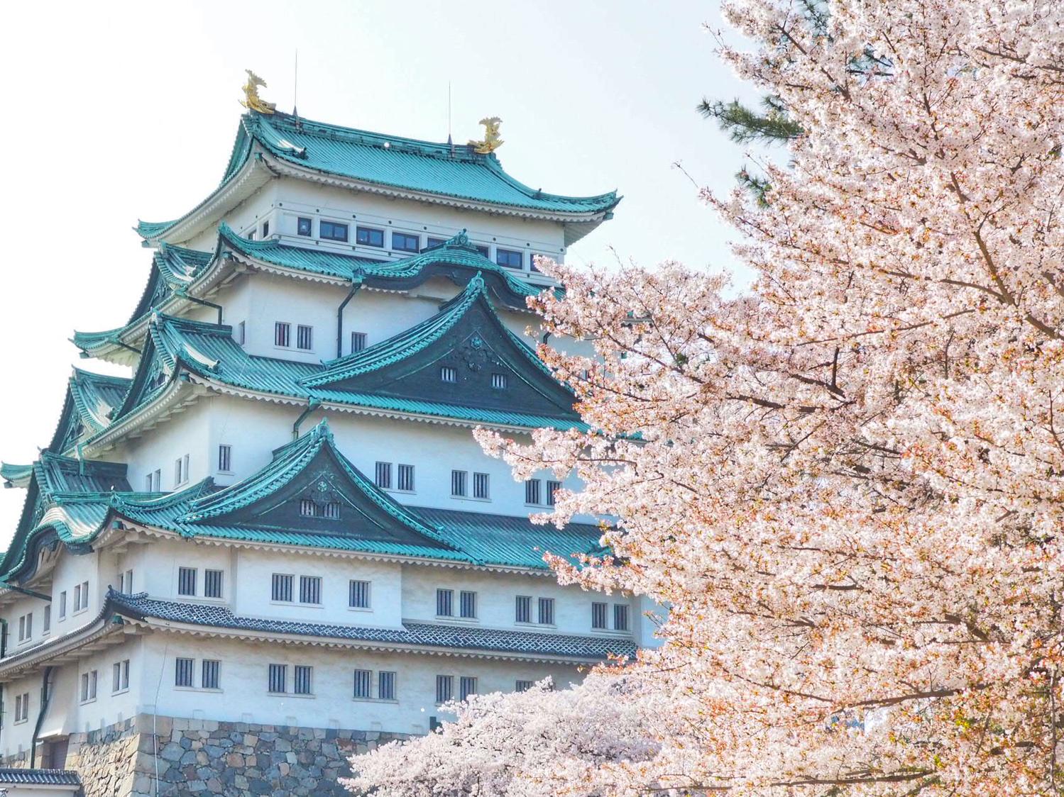 人気観光地:名古屋、もう行きつくした?