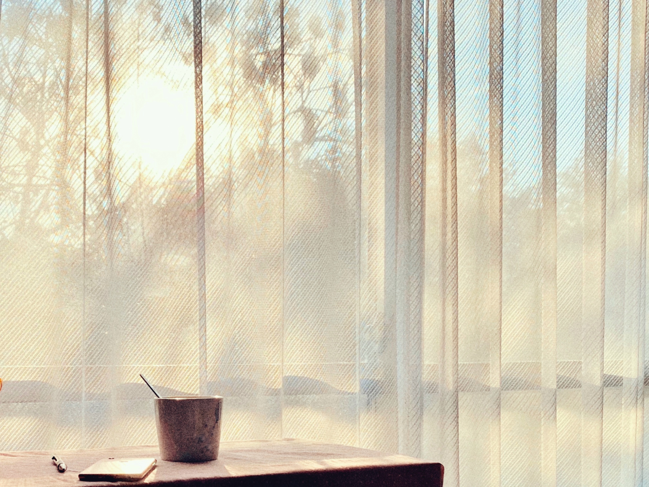 朝のモニコも同じくらい素敵だよ