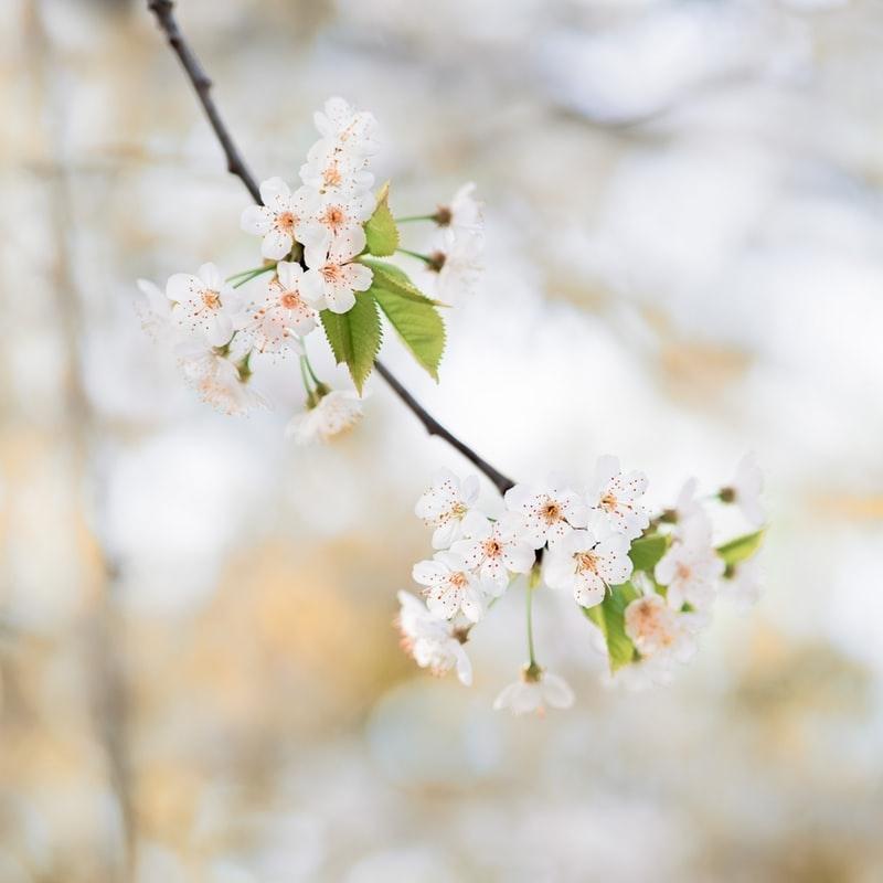 肌の露出がだんだんと増える春先