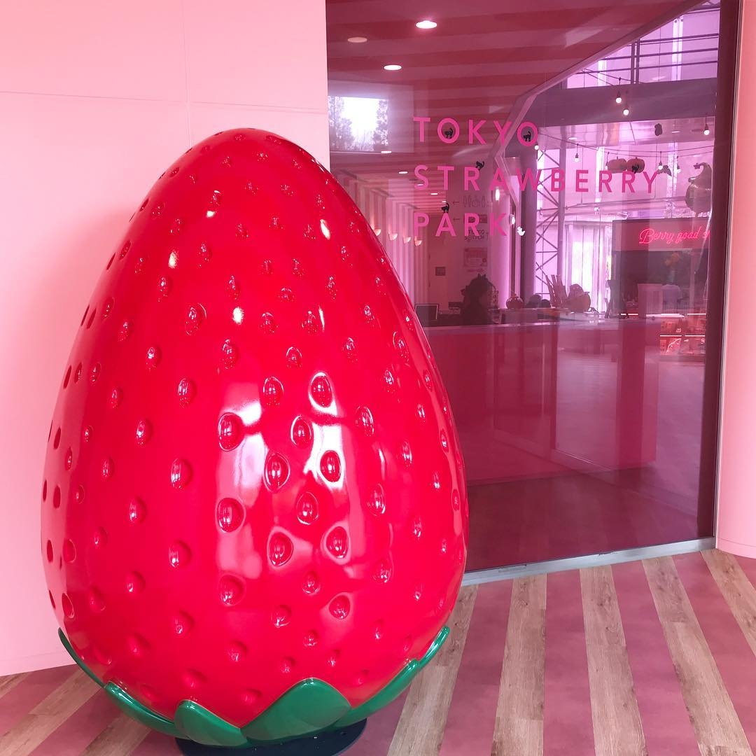 FOR「イチゴ」マニアさん:TOKYO STRAWBERRY PARK