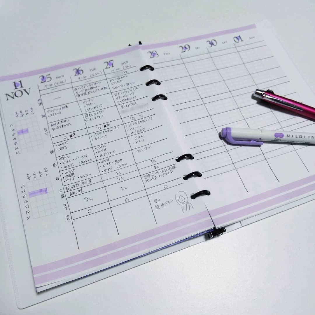 スケジュール帳と並行して