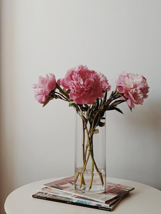 お部屋にお花を飾りました