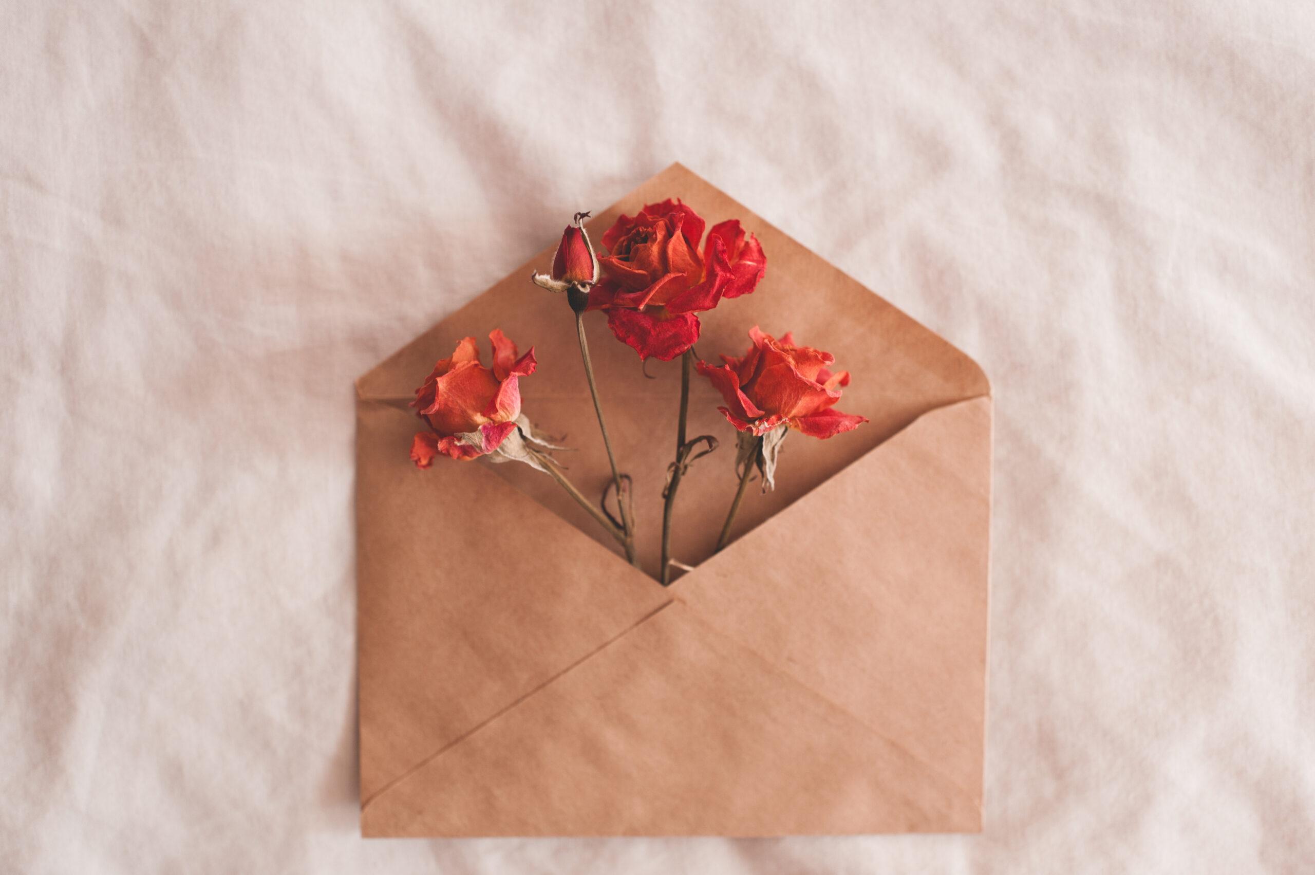 計画3:感謝の気持ちを込めた手紙を添えて