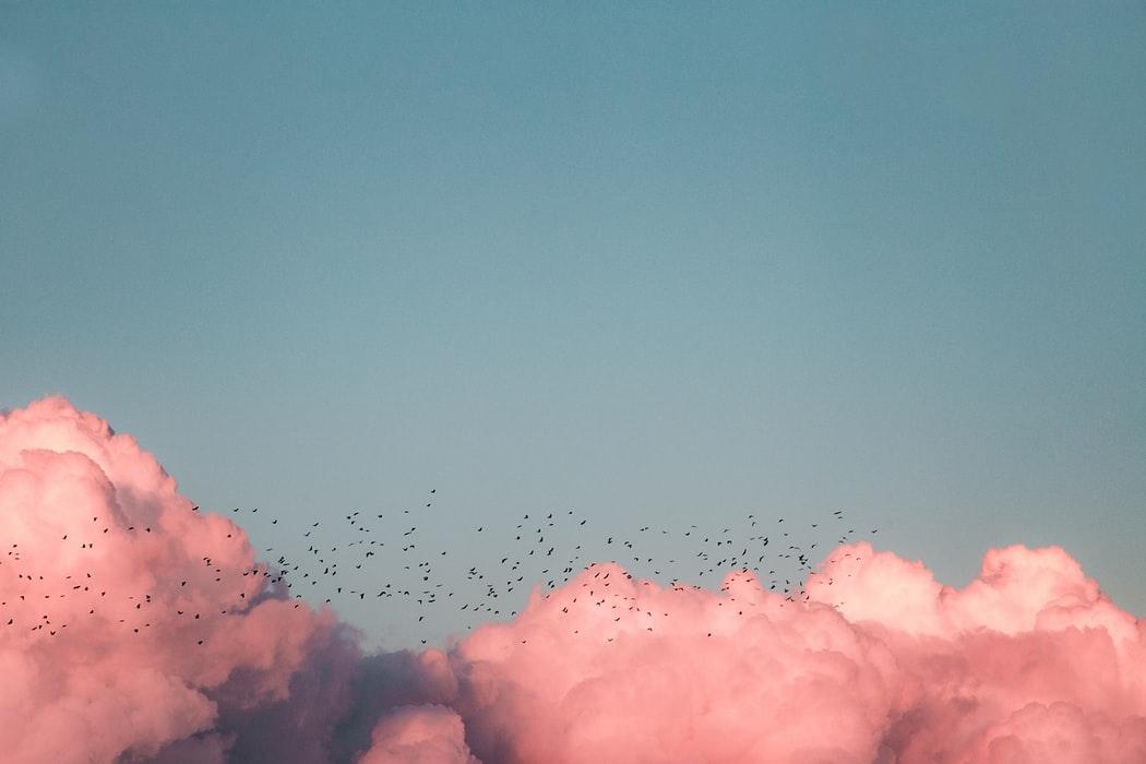 まずは雲メイクのやり方をcheck
