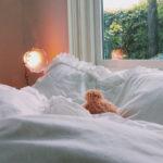 休日の朝は、お日様の光と共に「おはよう」を。同棲カップルの日常を紹介していきます