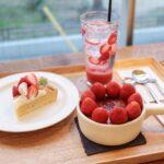 フルーツを求めてカフェ&shop巡り。心と体がよろこぶ果物のスイーツ6選