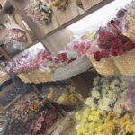 ドライフラワーと雑貨。TOKYO FANTASTIC OMOTESANDOで素敵な暮らしを