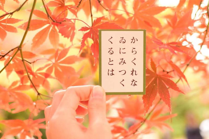 大人になった今だからこそ知識を深めたい。文学少女たちのための5つの日本古典文学