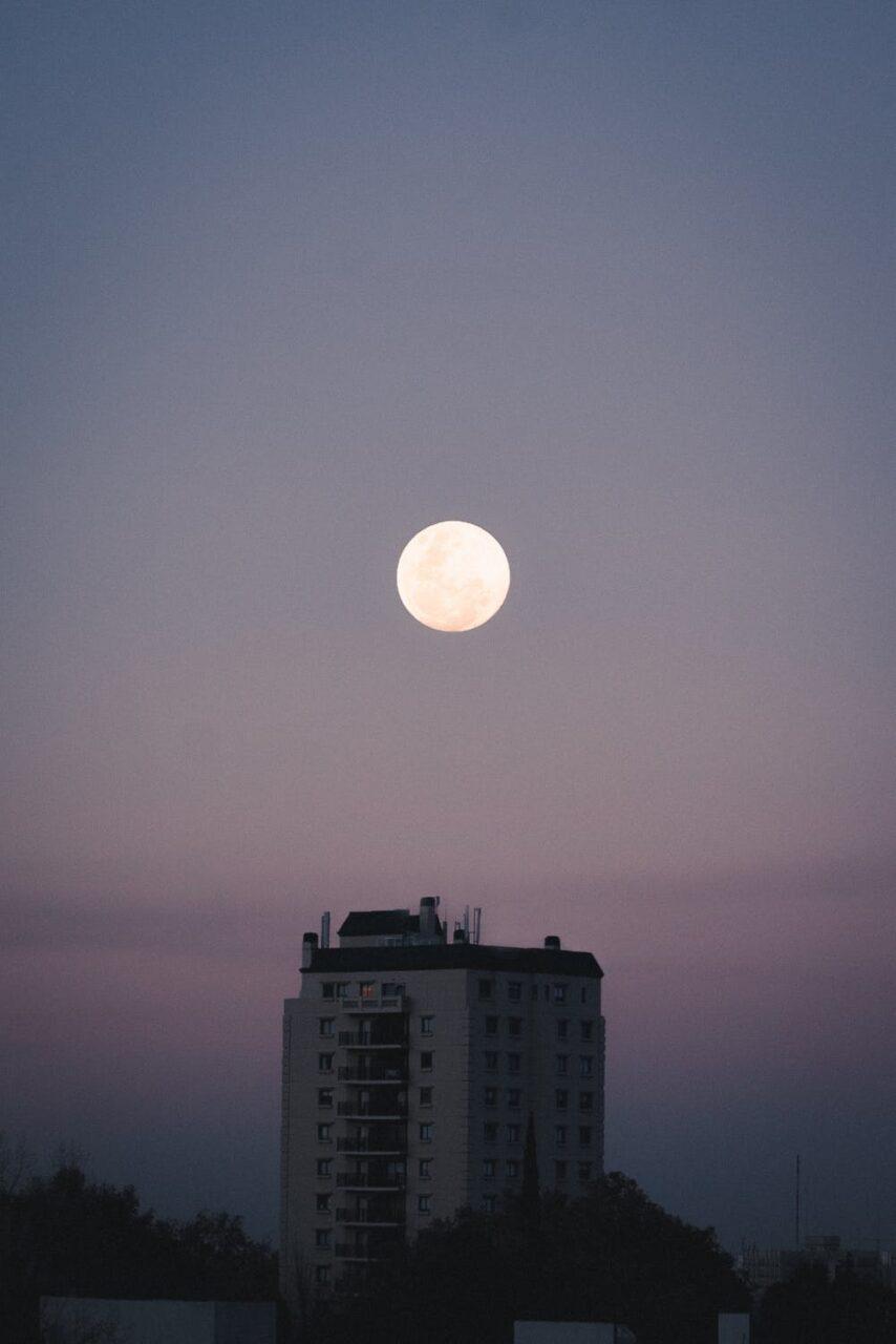 満月が昇ったら映画を見ませんか?ホットドリンク片手に見たいmovieカタログ