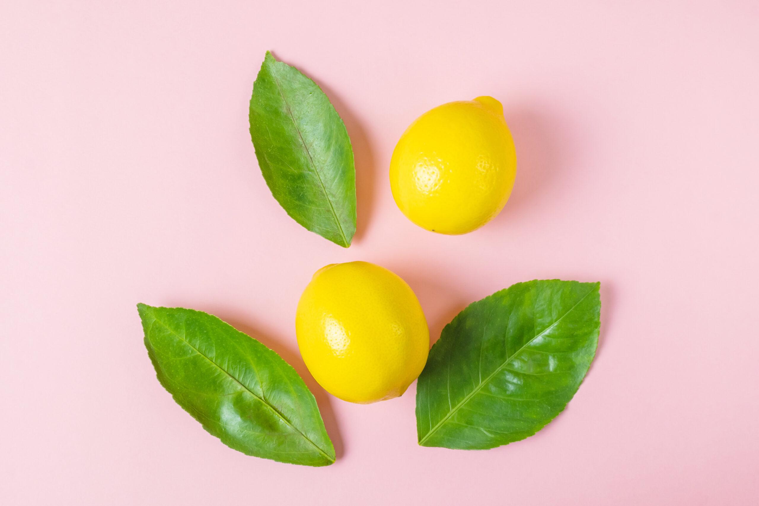 さっぱり爽やかな檸檬に首っ丈